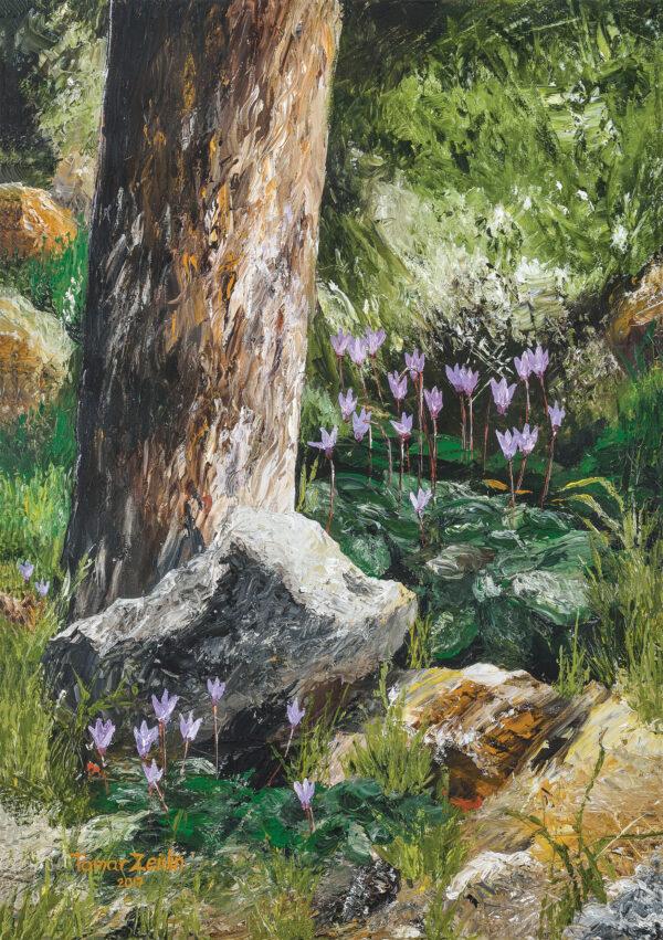 ציור רקפות בהרי יהודה